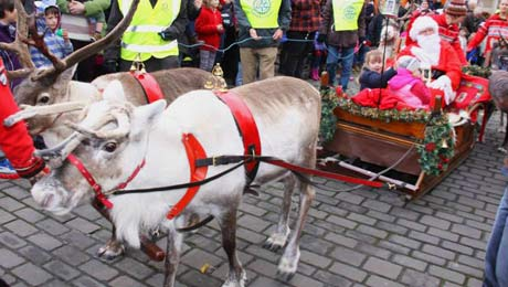 Visit Wells Christmas festivals from Bath Chew Valley Caravan Park